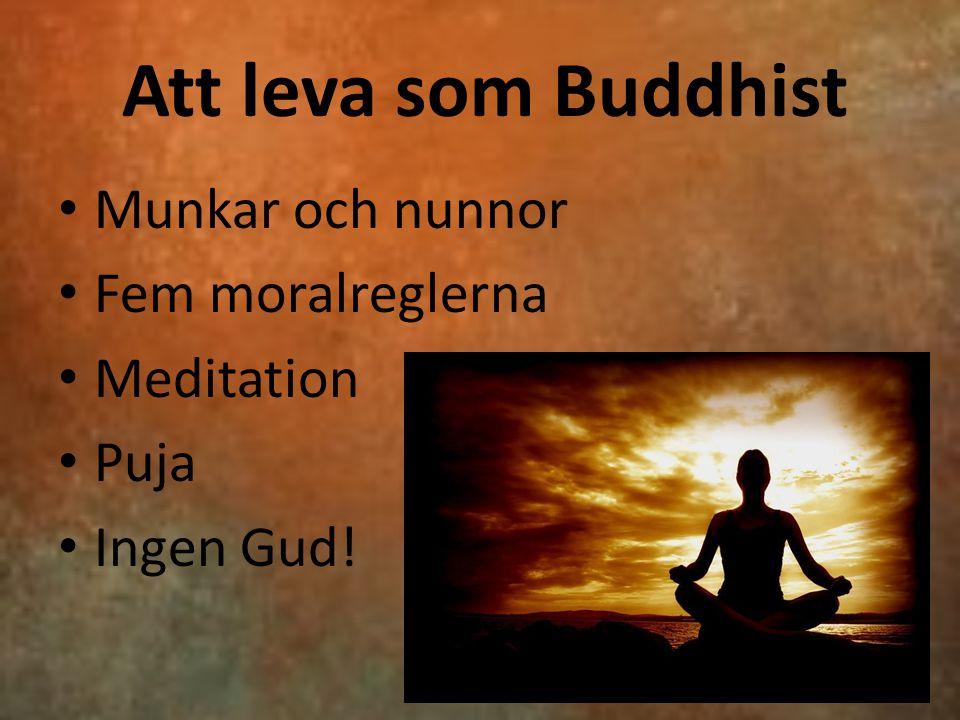 Att leva som Buddhist Munkar och nunnor Fem moralreglerna Meditation