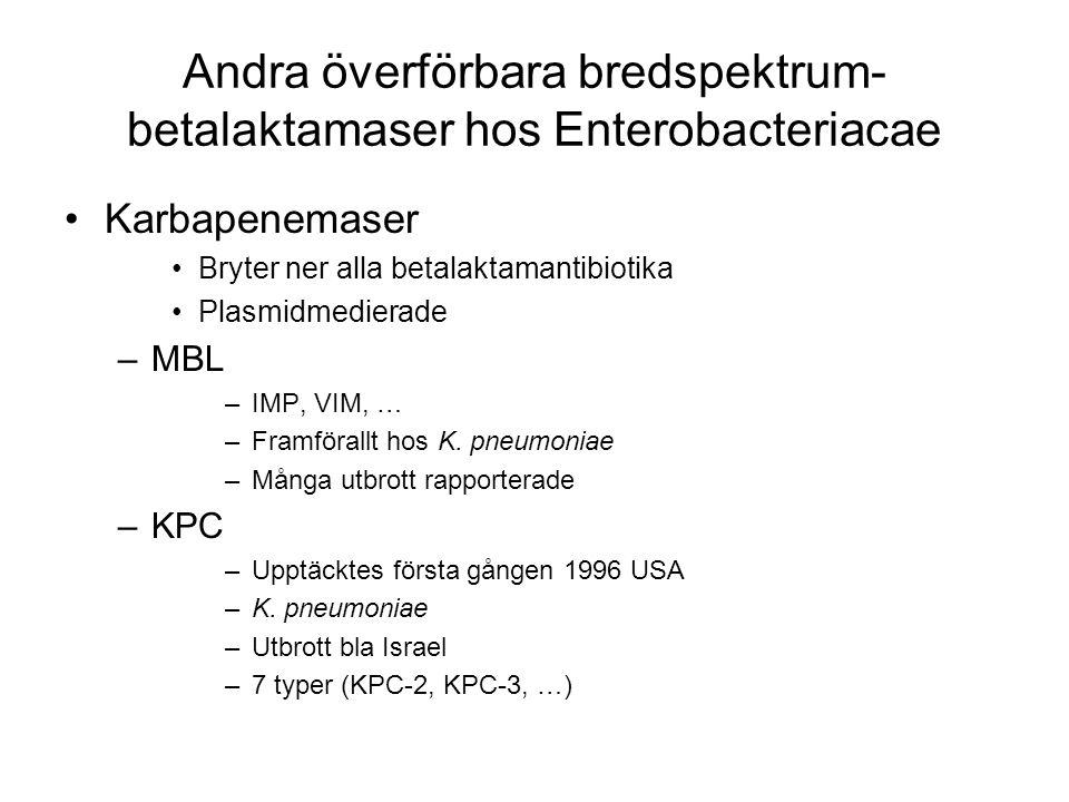 Andra överförbara bredspektrum-betalaktamaser hos Enterobacteriacae