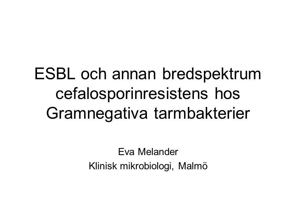Eva Melander Klinisk mikrobiologi, Malmö