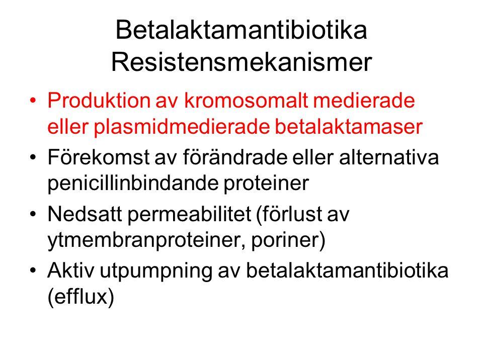 Betalaktamantibiotika Resistensmekanismer