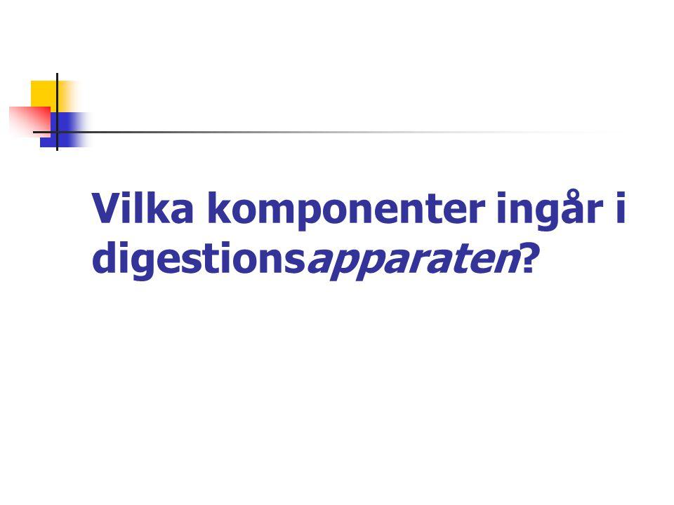 Vilka komponenter ingår i digestionsapparaten