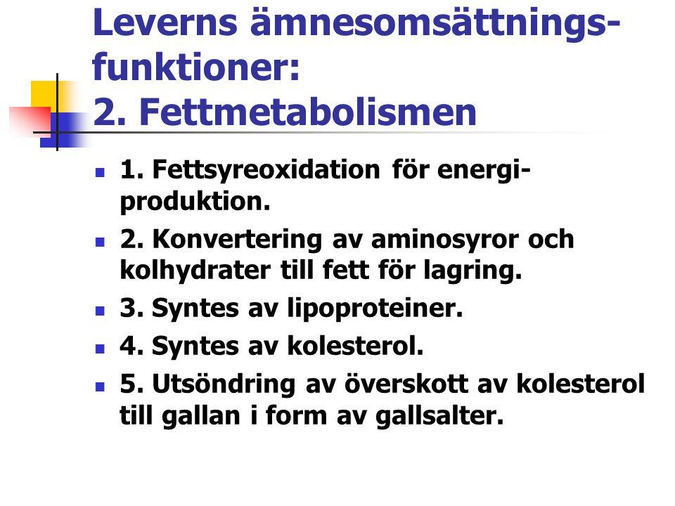 Leverns ämnesomsättnings-funktioner: 2. Fettmetabolismen