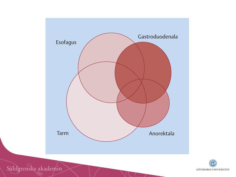 Ett betydande överlapp mellan de olika funktionella mag-tarmsjukdomarna förekommer, och många har symtom från mer än en del av mag-tarmkanalen. Detta kan användas i diagnostiken ( samla indicier för att det rör sig om en funktionell magtarmsjukdom), då det till viss del skiljer dessa sjukdomar från de organiska. Dyspeptiska besvär, dvs. obehag eller smärta centralt upptill i buken, förefaller särskilt vanligt. Dessutom växlar symtombilden inte sällan från tid till annan hos en och samma individ mellan dominerande IBS-symtom och dyspepsi.