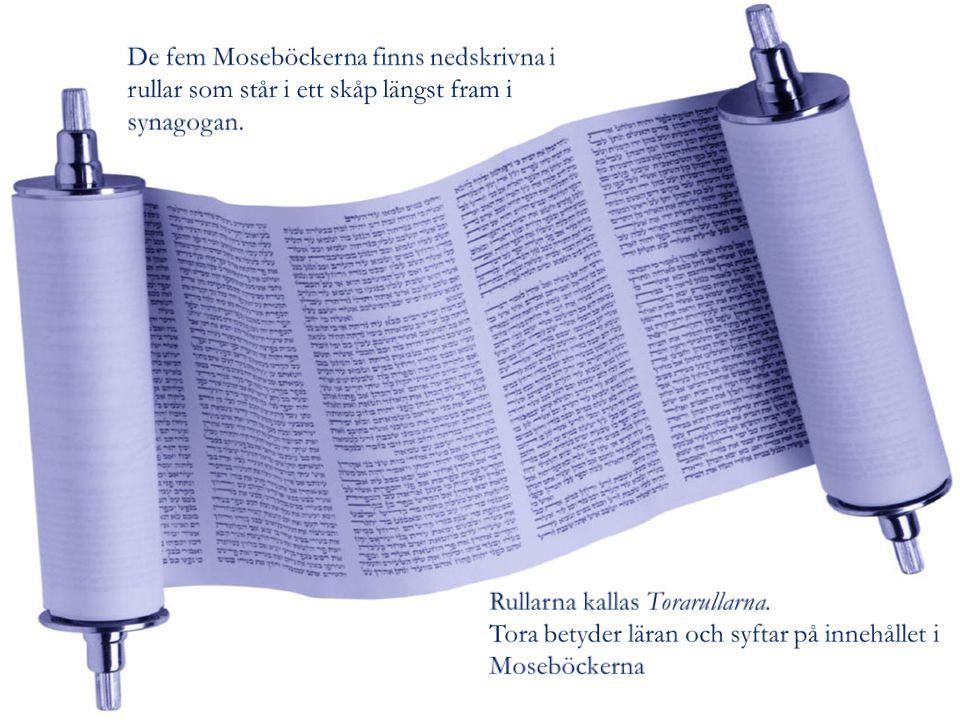 De fem Moseböckerna finns nedskrivna i rullar som står i ett skåp längst fram i synagogan.