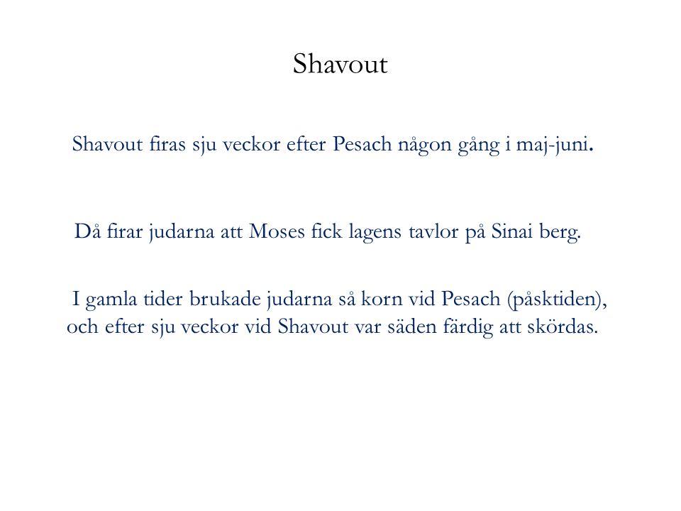Shavout firas sju veckor efter Pesach någon gång i maj-juni.