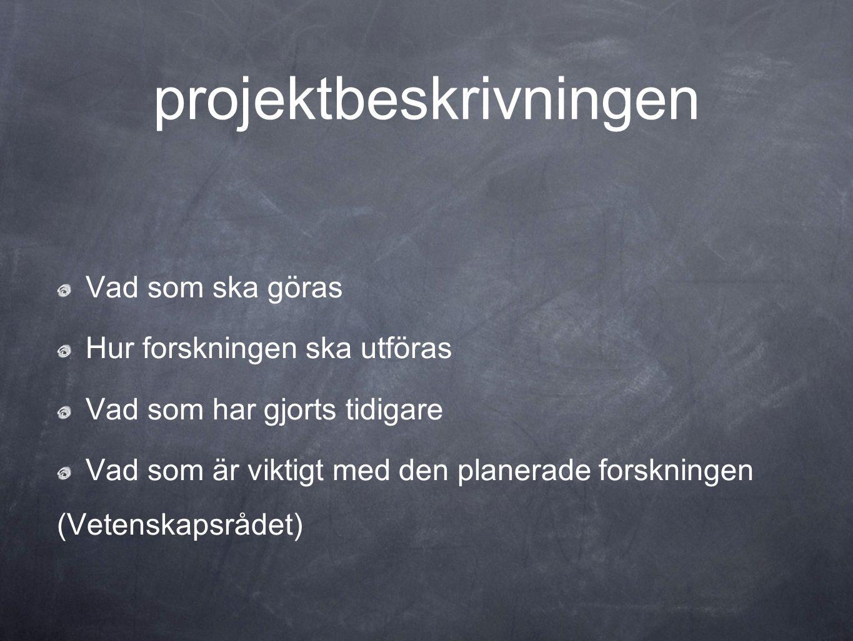 projektbeskrivningen