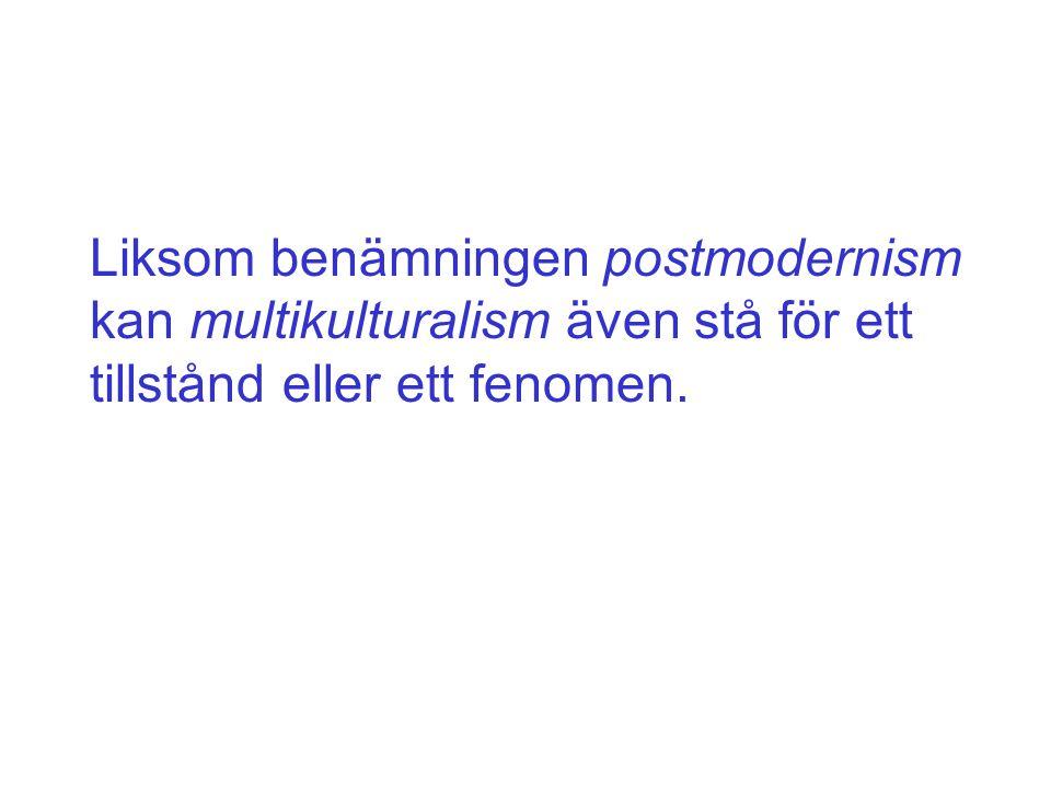Liksom benämningen postmodernism kan multikulturalism även stå för ett tillstånd eller ett fenomen.