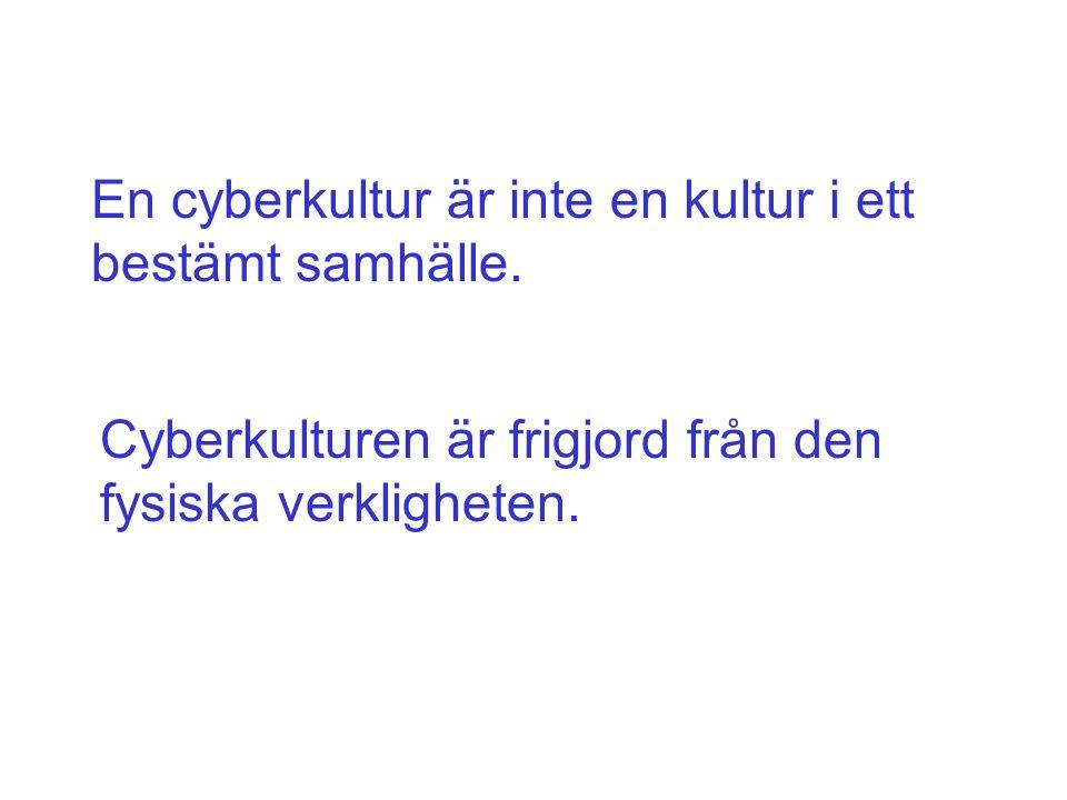 En cyberkultur är inte en kultur i ett bestämt samhälle.