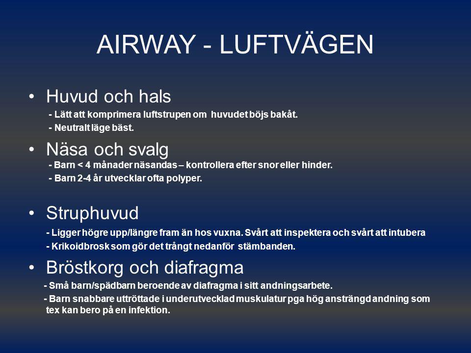 AIRWAY - LUFTVÄGEN Huvud och hals