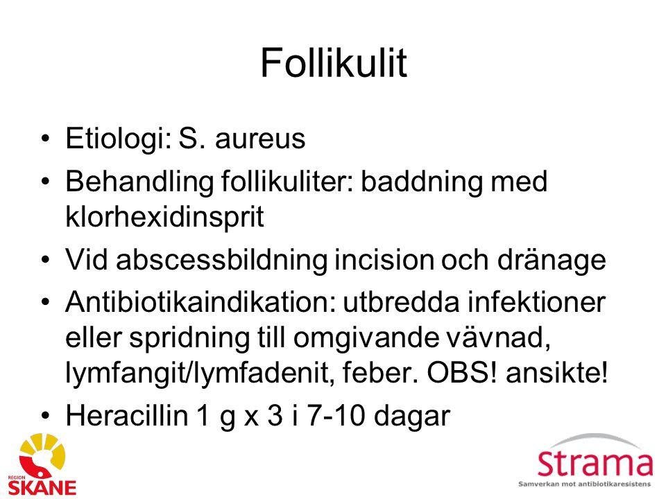 Follikulit Etiologi: S. aureus