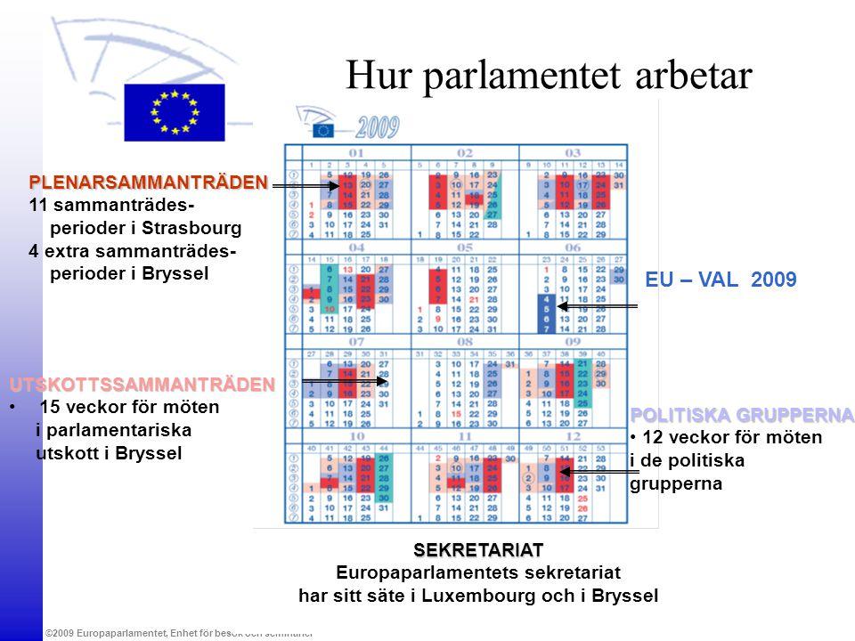 Hur parlamentet arbetar