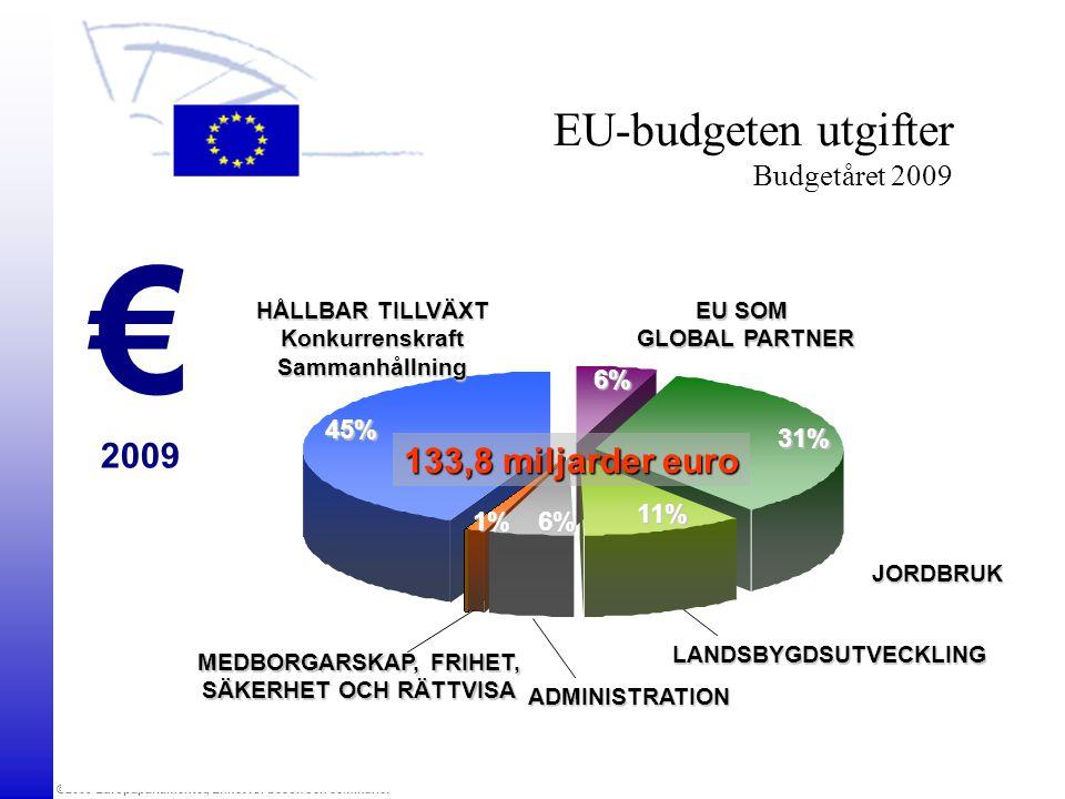 EU-budgeten utgifter Budgetåret 2009