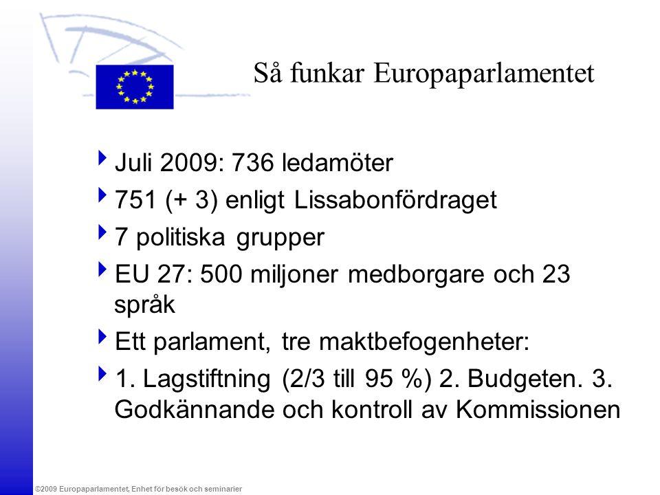 Så funkar Europaparlamentet