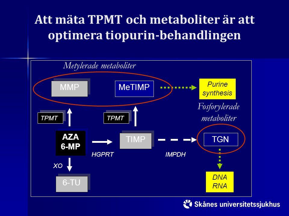 Att mäta TPMT och metaboliter är att optimera tiopurin-behandlingen