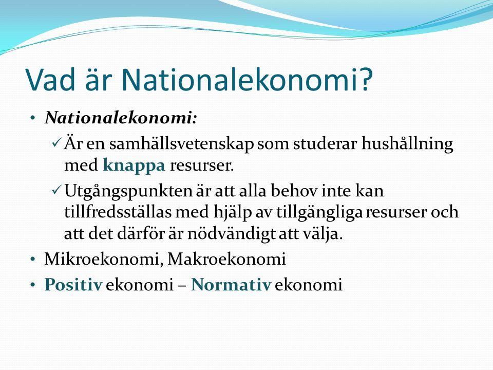 Vad är Nationalekonomi