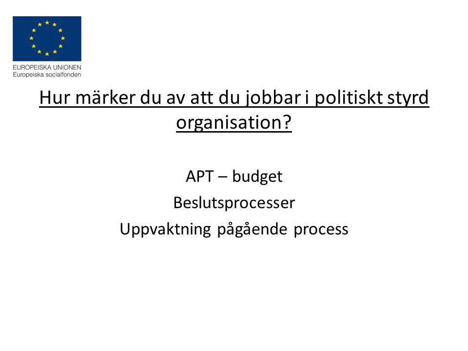Hur märker du av att du jobbar i politiskt styrd organisation