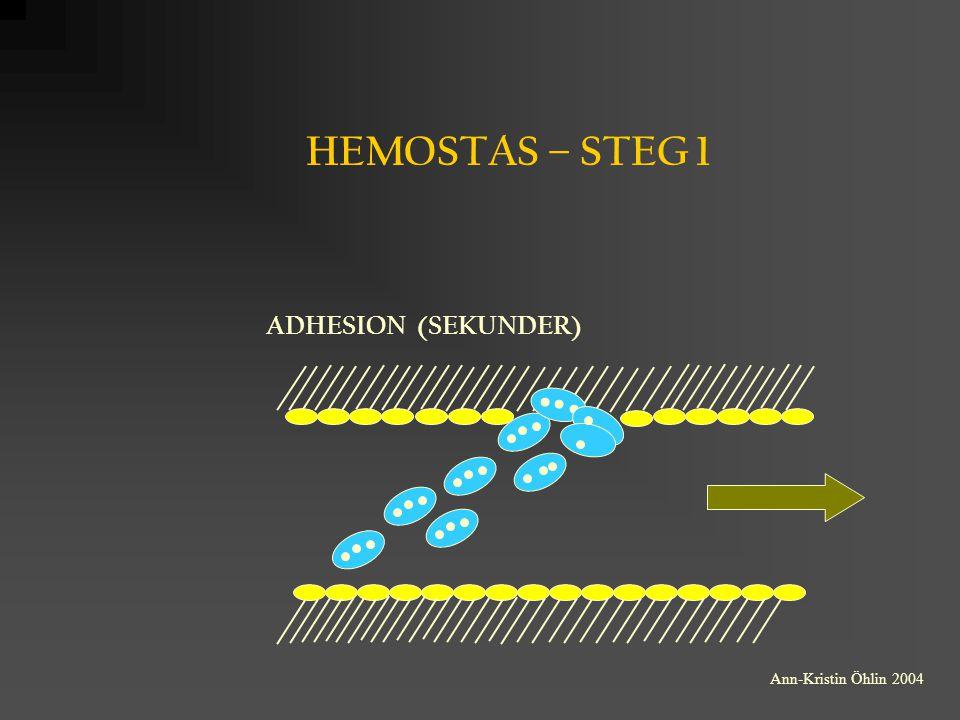 HEMOSTAS – STEG 1 ADHESION (SEKUNDER) Ann-Kristin Öhlin 2004