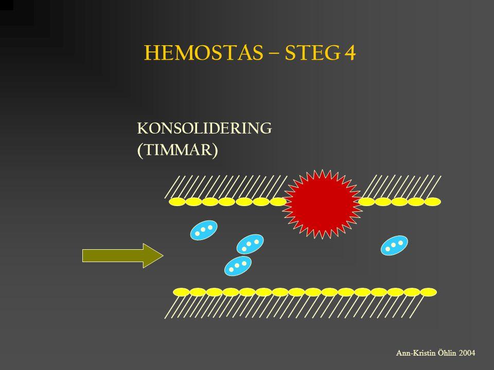 HEMOSTAS – STEG 4 KONSOLIDERING (TIMMAR) Ann-Kristin Öhlin 2004