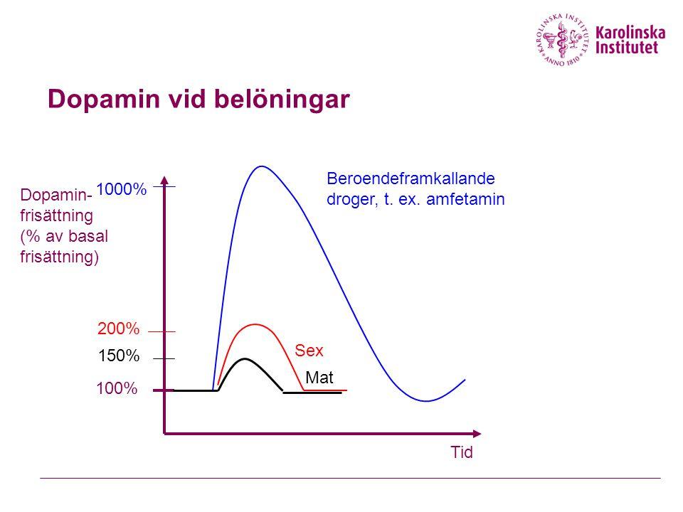 Dopamin vid belöningar