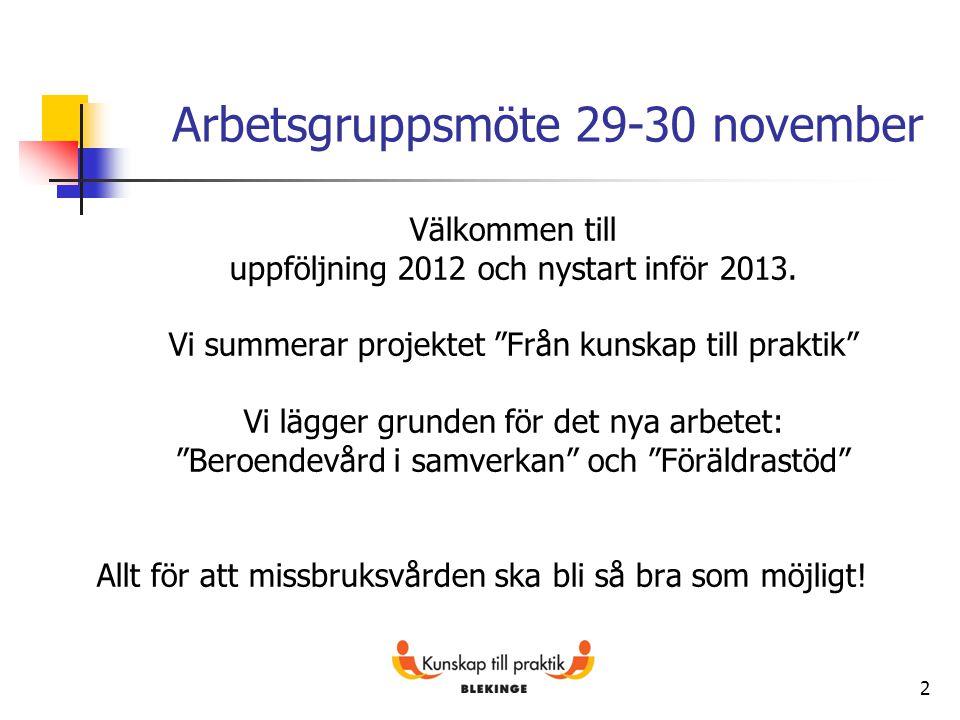 Arbetsgruppsmöte 29-30 november