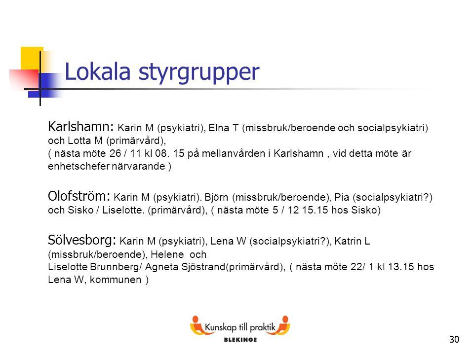 Lokala styrgrupper Karlshamn: Karin M (psykiatri), Elna T (missbruk/beroende och socialpsykiatri) och Lotta M (primärvård),