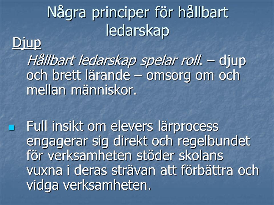 Några principer för hållbart ledarskap