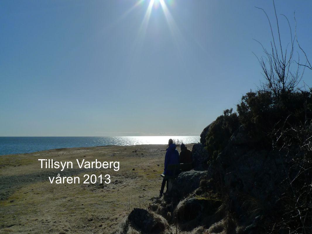 Tillsyn Varberg våren 2013 Tillsynsprocessen