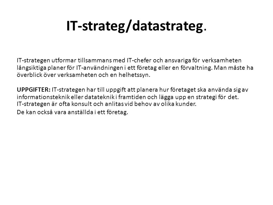 IT-strateg/datastrateg.