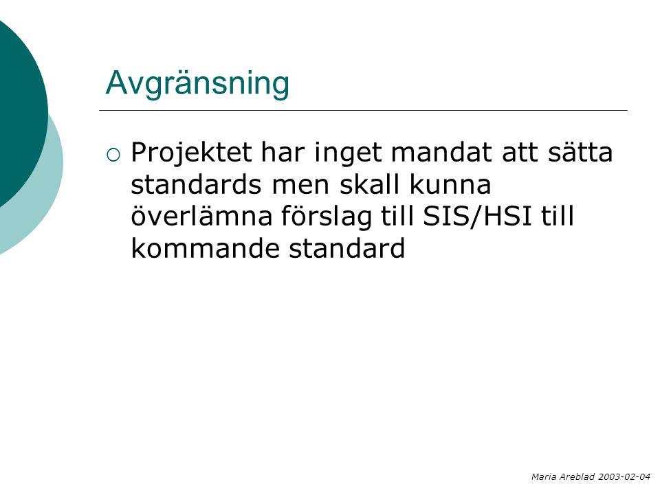 Avgränsning Projektet har inget mandat att sätta standards men skall kunna överlämna förslag till SIS/HSI till kommande standard.