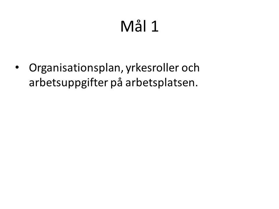 Mål 1 Organisationsplan, yrkesroller och arbetsuppgifter på arbetsplatsen.