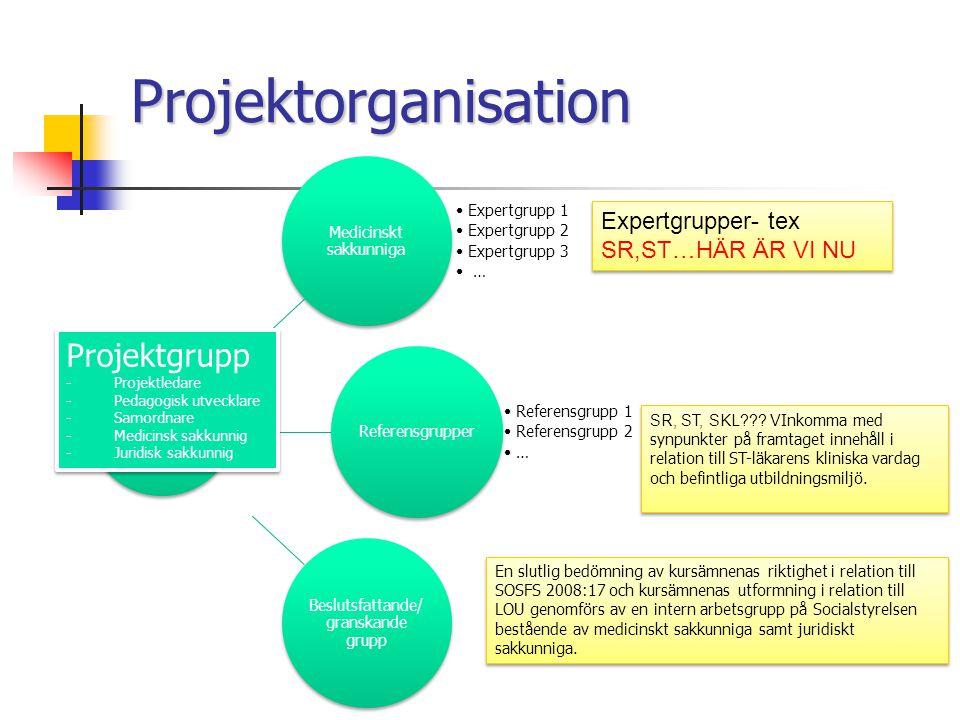 Projektorganisation Projektgrupp Expertgrupper- tex SR,ST…HÄR ÄR VI NU