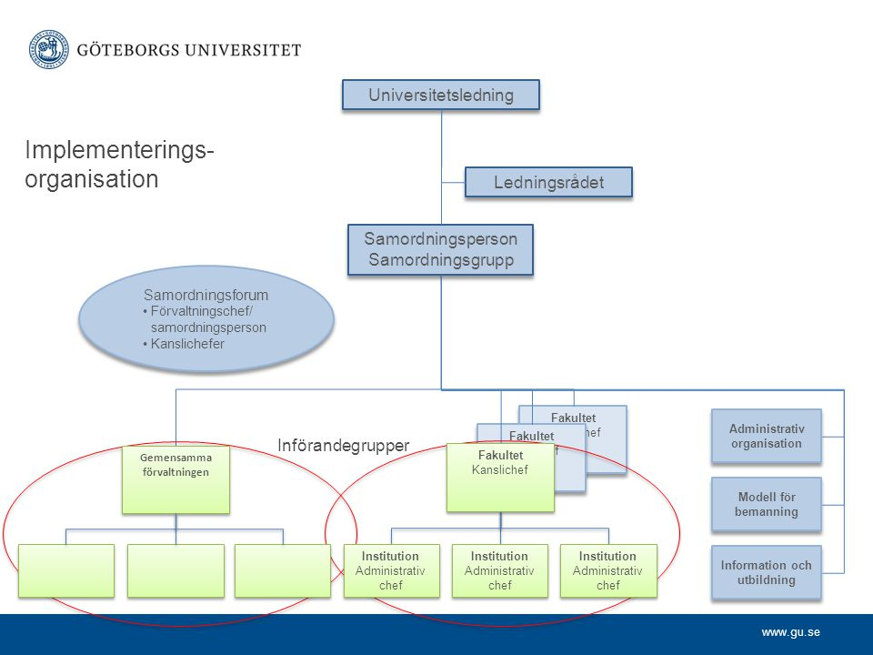Implementerings-organisation