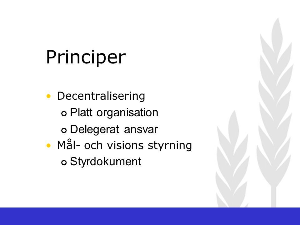 Principer Platt organisation Delegerat ansvar Styrdokument