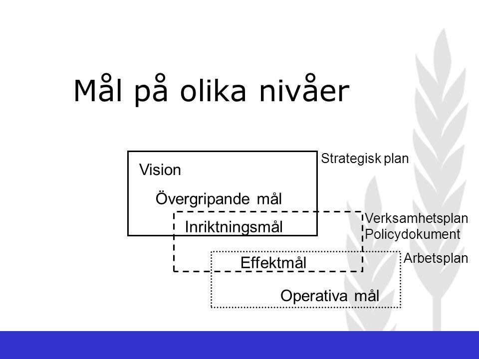 Mål på olika nivåer Vision Övergripande mål Inriktningsmål Effektmål