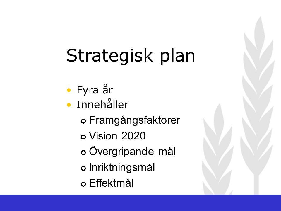 Strategisk plan Framgångsfaktorer Vision 2020 Övergripande mål