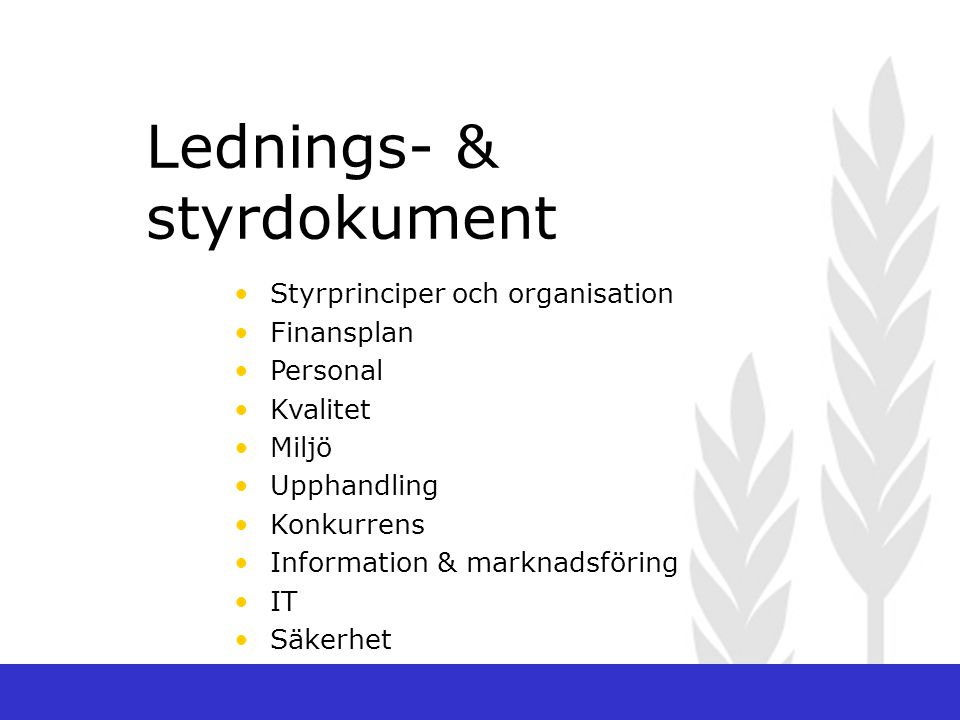 Lednings- & styrdokument