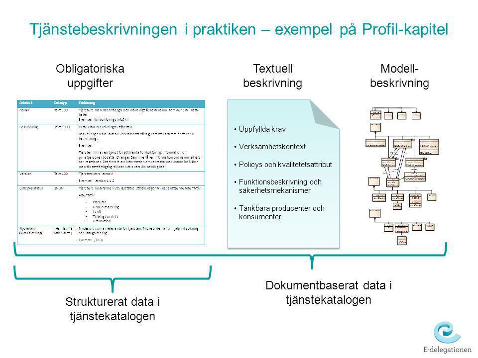 Tjänstebeskrivningen i praktiken – exempel på Profil-kapitel