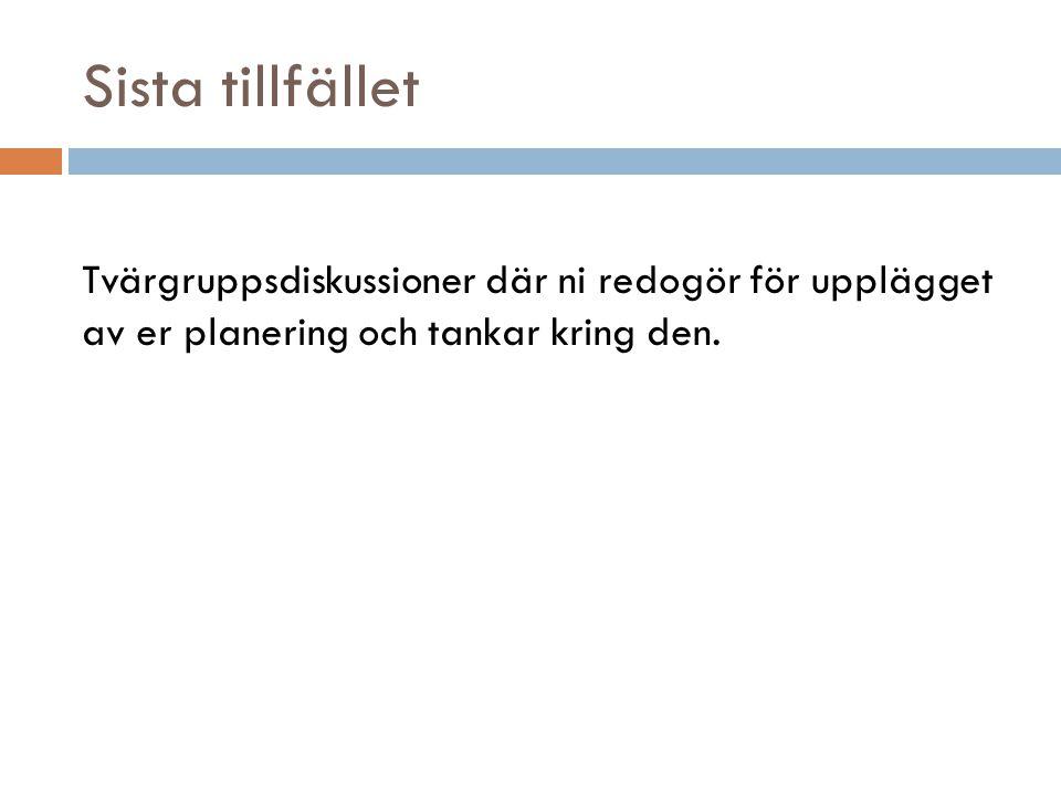 Sista tillfället Tvärgruppsdiskussioner där ni redogör för upplägget av er planering och tankar kring den.