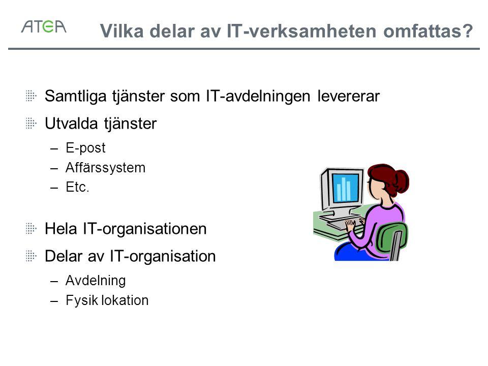 Vilka delar av IT-verksamheten omfattas