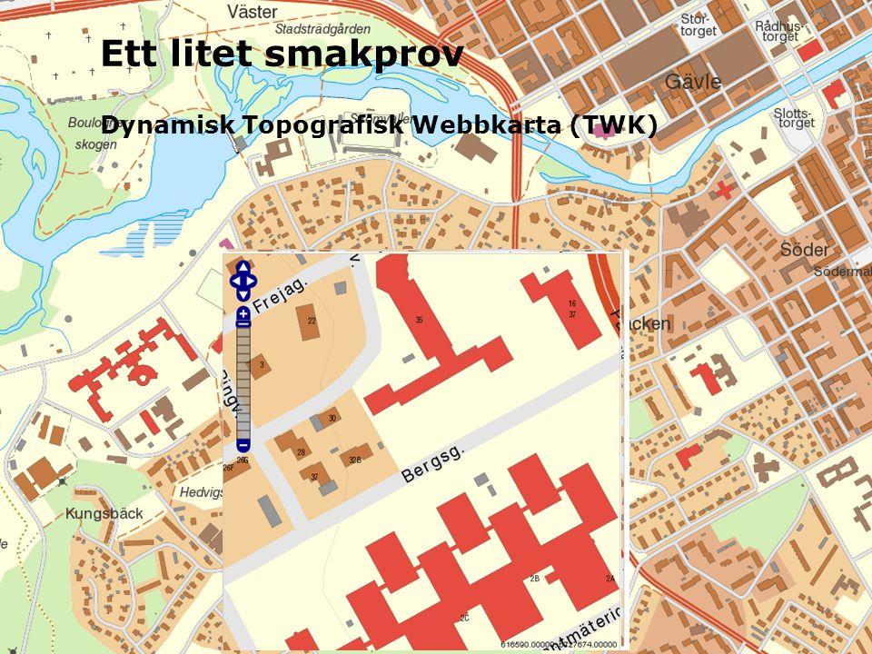 Ett litet smakprov Dynamisk Topografisk Webbkarta (TWK)