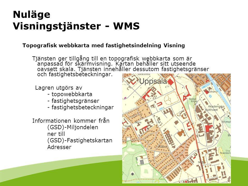 Nuläge Visningstjänster - WMS