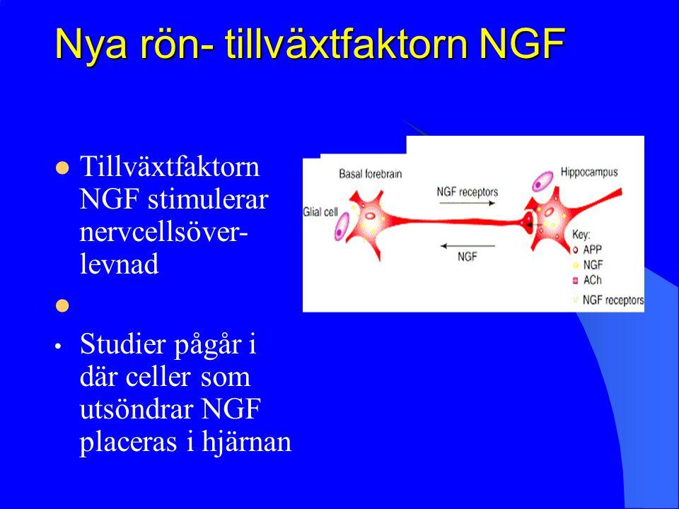 Nya rön- tillväxtfaktorn NGF