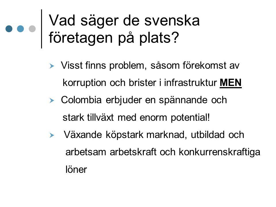 Vad säger de svenska företagen på plats