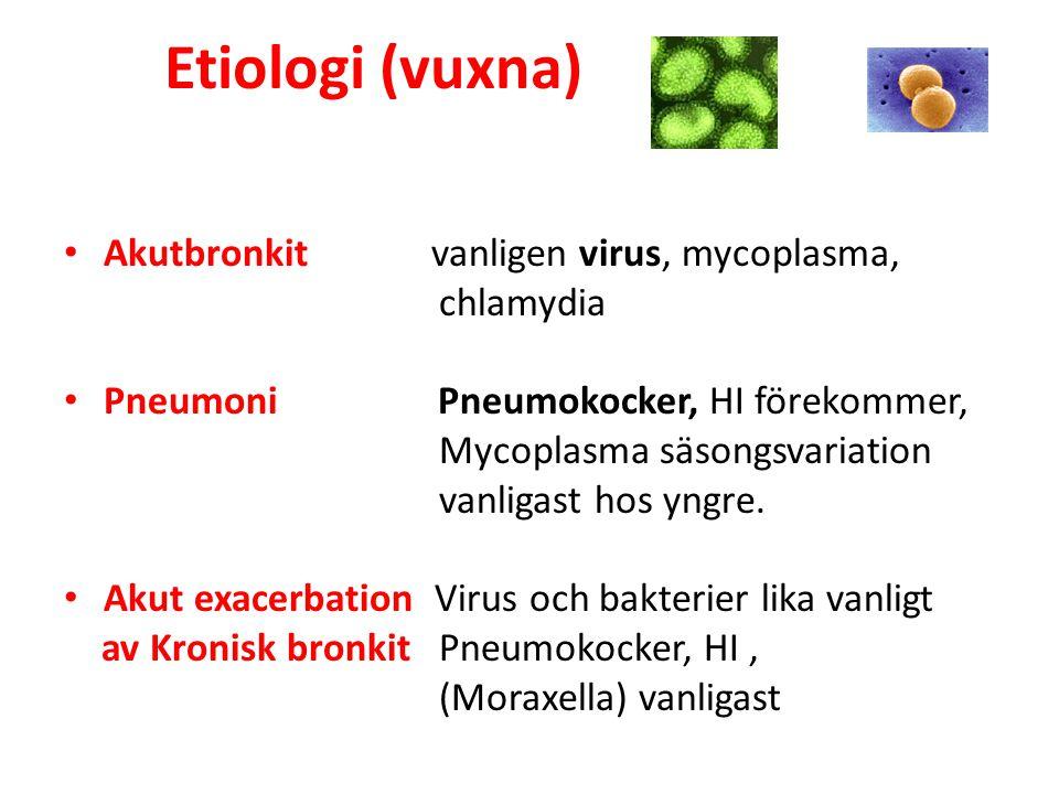 Etiologi (vuxna) Akutbronkit vanligen virus, mycoplasma, chlamydia
