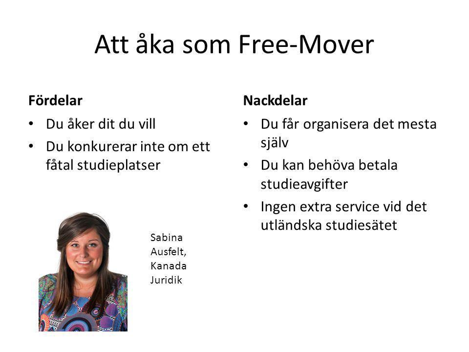 Att åka som Free-Mover Fördelar Nackdelar Du åker dit du vill