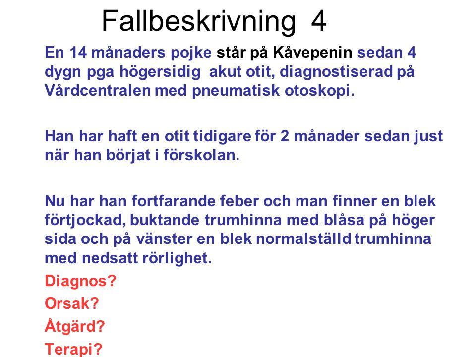 Fallbeskrivning 4