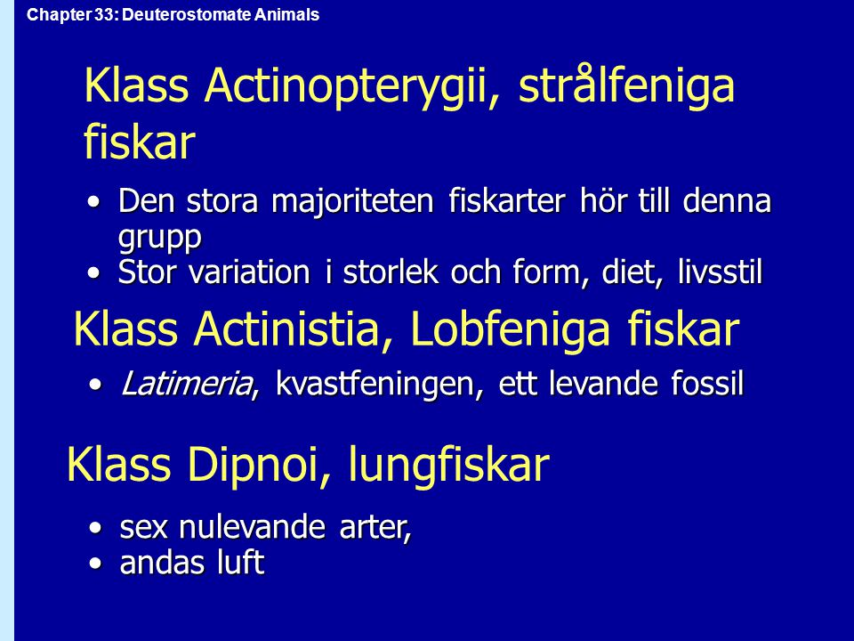 Klass Actinopterygii, strålfeniga fiskar