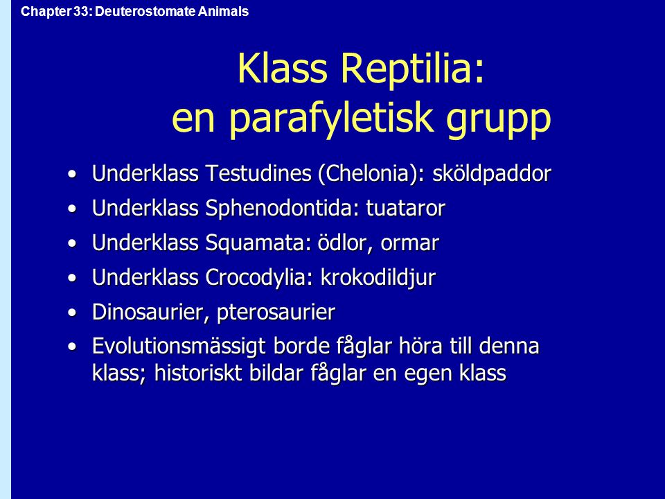 Klass Reptilia: en parafyletisk grupp