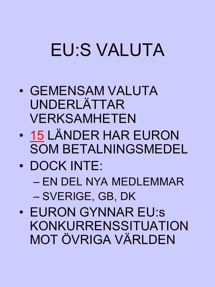 EU:S VALUTA GEMENSAM VALUTA UNDERLÄTTAR VERKSAMHETEN