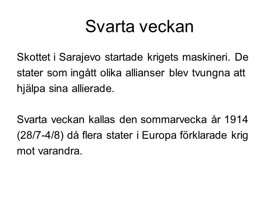 Svarta veckan Skottet i Sarajevo startade krigets maskineri. De